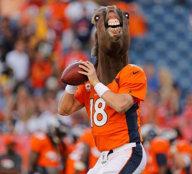 Denver Broncos | What If NFL Teams Took Their Nicknames Literally: A Photoshop Investigation