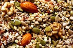 Alimentos no animales con magnesio