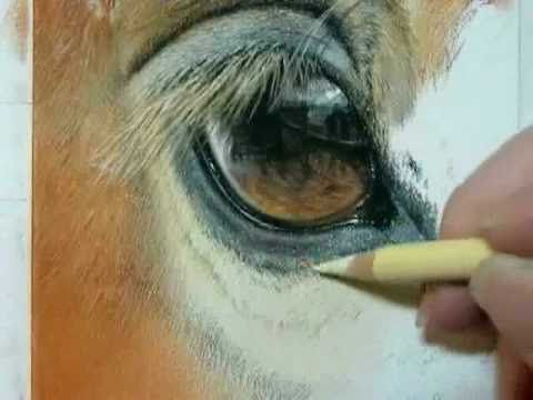 "Painting a Day Demonstration- Horse Eye by Roberta ""Roby"" Baer, PSA Watch the Whole video!!!  Wow"