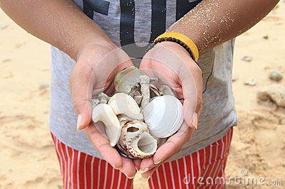 hand a man holding snail at beach
