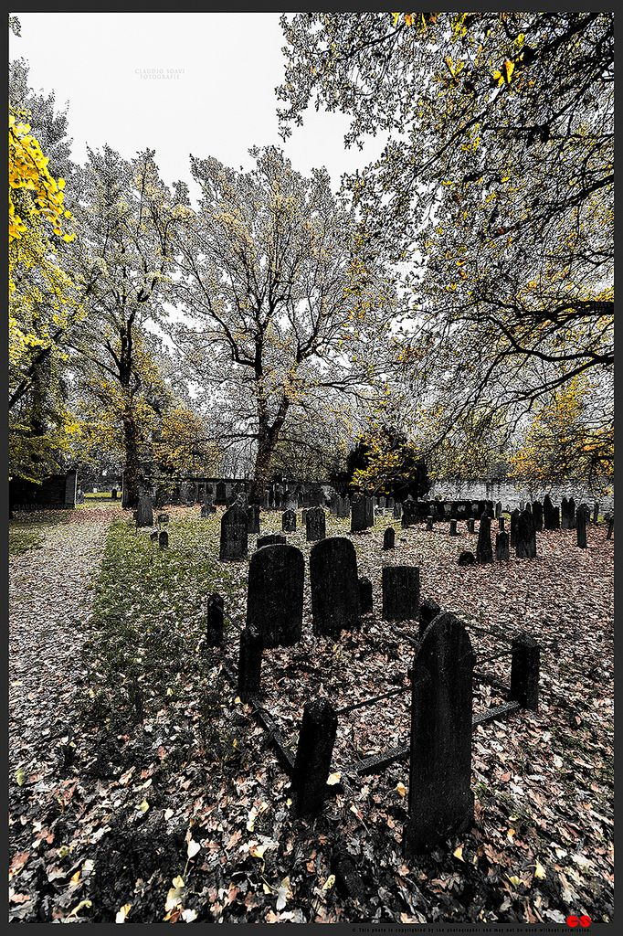 https://flic.kr/p/AEvihe | Autumn at the Jewish cemetery in Ferrara | © All rights reserved. Use without permission is illegal.