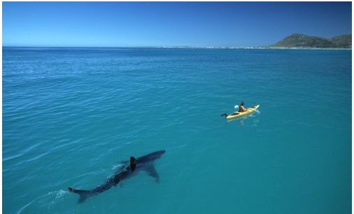 Nope.  South Africa