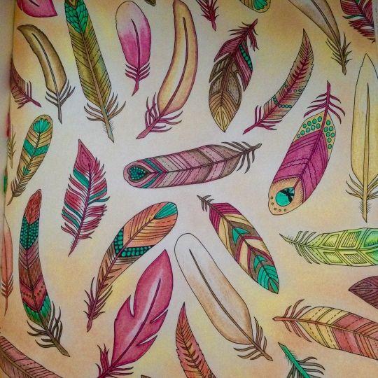 Colouring Gallery Adult ColoringColouringColoring BooksJohanna BasfordPensForestsFeathers