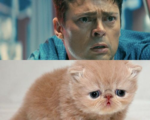 How Karl Urban in Star Trek looks like a sad kitty. | 30 Images You'll Never Ever Be Able To Erase From Your Memory