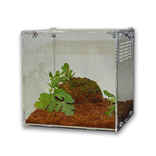 Happy Pet Acrylic Reptile Terrarium Habitat, Ideal for Larvae spiders, ants, scorpions and other small reptiles, 15 * 15 * 15 cm, transparent