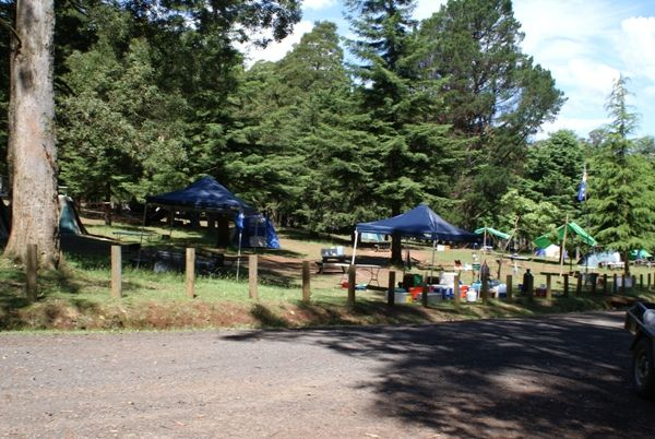 Camp Firth Park Australian Campsites.com.au - Free and Cheap Camping Australia Wide