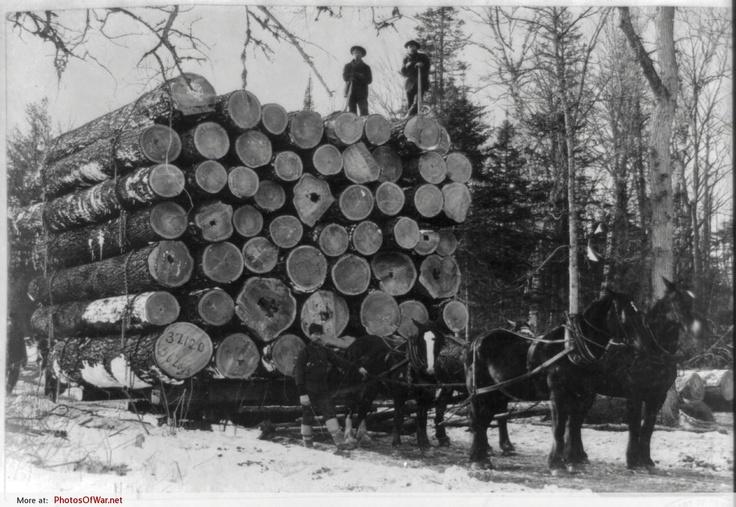"""Largest load ever hauled"", Rush City, Minnesota, by W.G. Hopps, ca.1895"