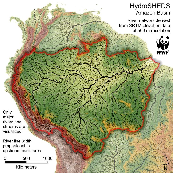 Hydrosheds of the Amazon R Basin, the area drained by the Amazon R and its tributaries. Only major rivers and streams are shown. River line width proportional to upstream river basin area. Source: WWF