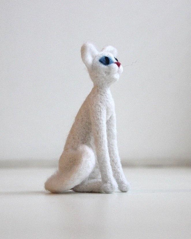 little wooly cat
