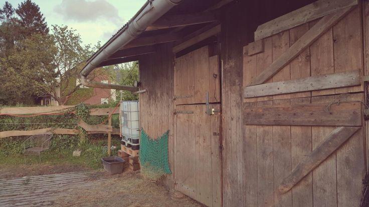 De locatie - Equi-unique, pedagogische begeleiding en psychosociale hulpverlening met behulp van paarden