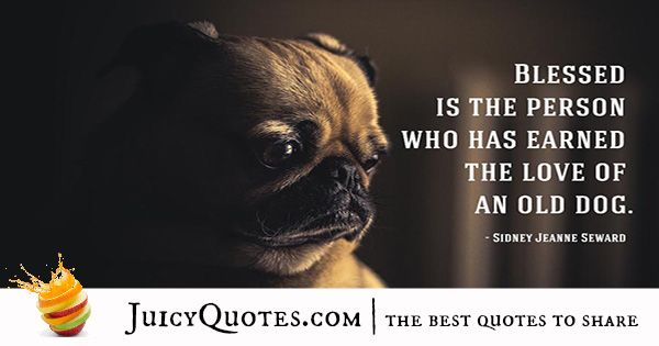 Quotes About Dogs - 1