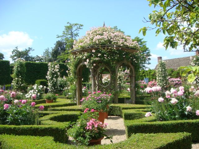 English Rose Garden   Looks Like Queen Of Hearts Garden.