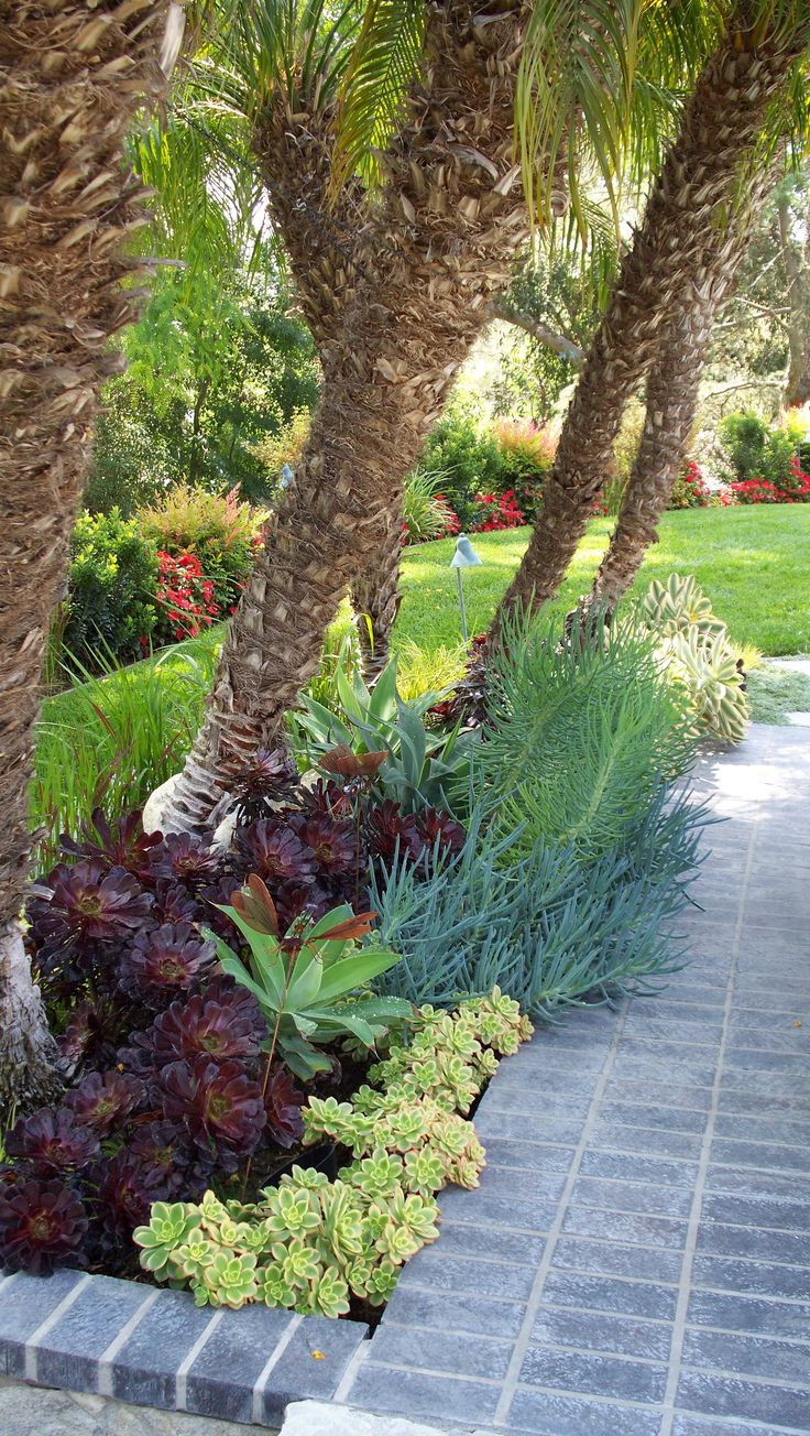 Pin By Roger S Gardens Home Amp Garden Southern California On Ca Friendly 174 Gardening