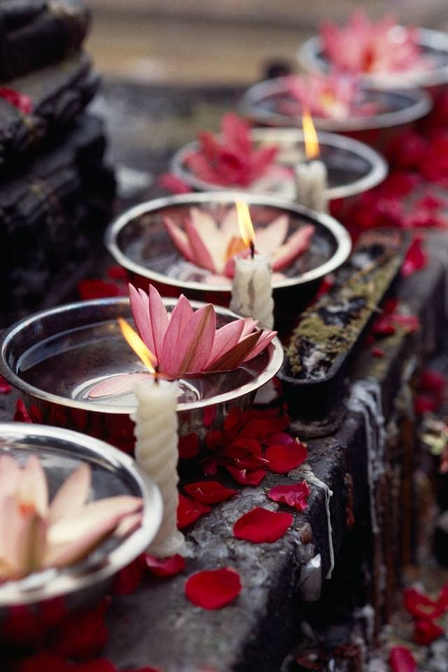 Lotus blooms & candlelight.