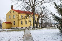 Clapboard House Photos - Shaker House - Mustard by Mary Carol Story