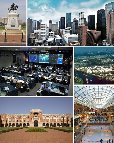 Houston is the fourth-largest city in the United States of America, and the largest city in the state of Texas