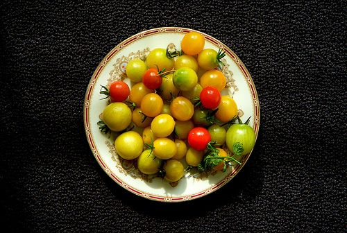 Small Summer Tomatoes