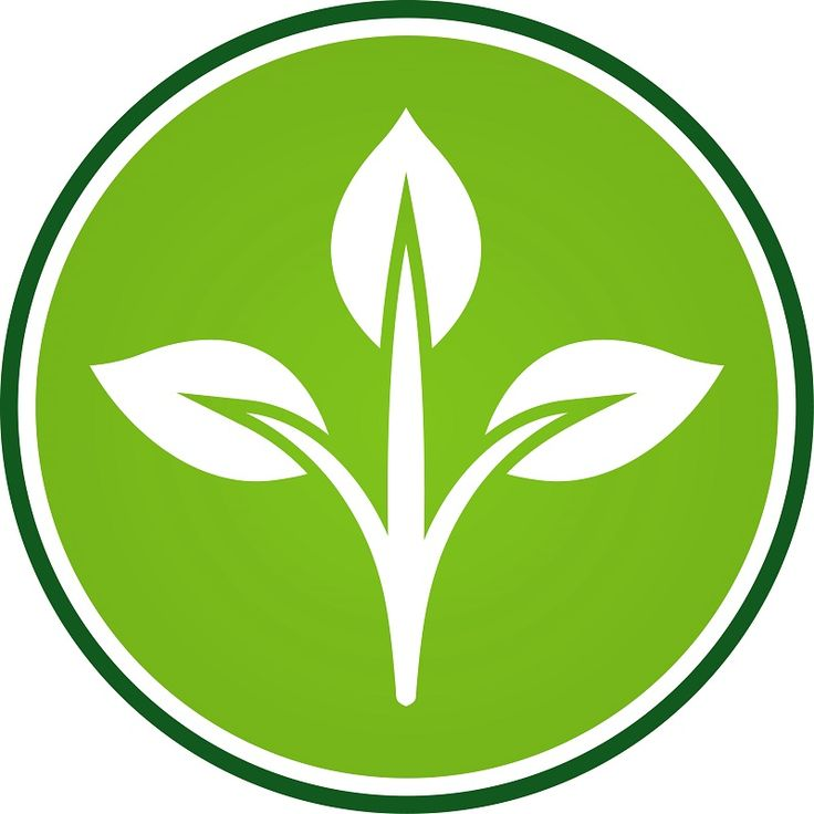Gardening services High Wycombe - leaf blowing