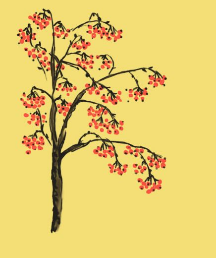 It's the background to a different picture I drew, but I thought it looked cool all on it's own, so I decided to post it. It's a rowan tree, as the name implies. xD Artwork by me.
