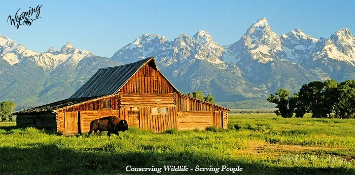 24 Best Fall 2013 Wyoming Camping Trip Images On Pinterest