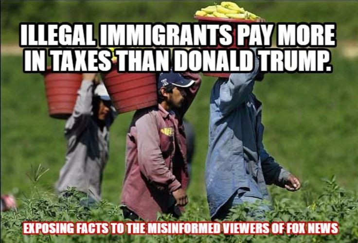 Illegal immigrants pay more in taxes than Donald Trump.