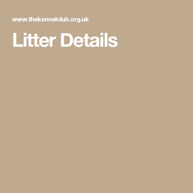 Litter Details