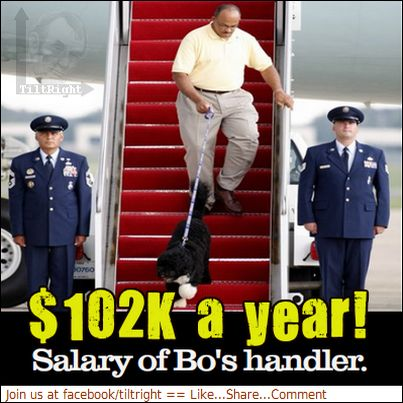 Not only that.... you see that plane..that is the dog being flown in SEPERATLY from the family.  (They don't fly in with the dog) and .. Those men standing guard (OUR MILITARY) are standing guard for the DOG! Tax payer dollars hard at work.  Think how long you had to work to pay for that use of your money !