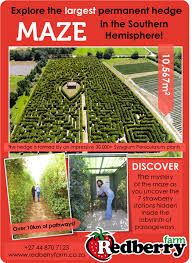Image result for redberry maze