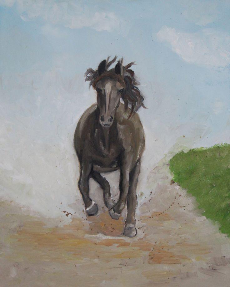 Koń galopuje ( 50x40 , Olejna)