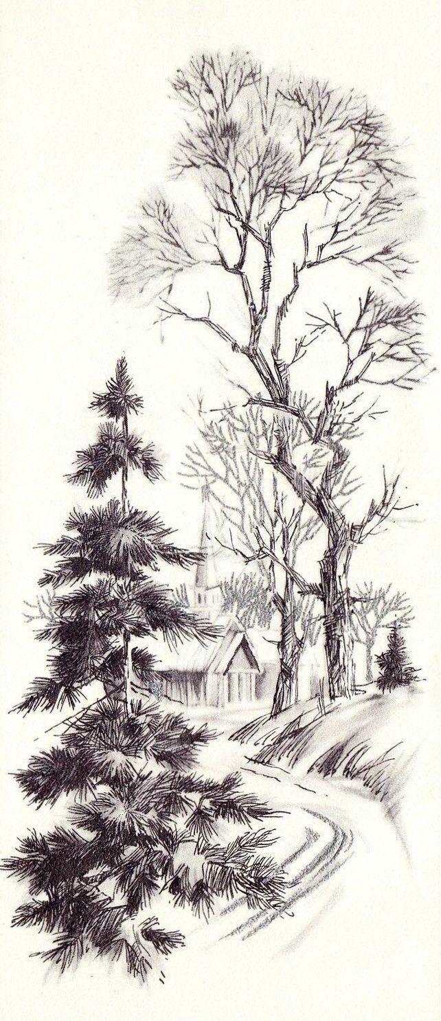 Quick nature sketch