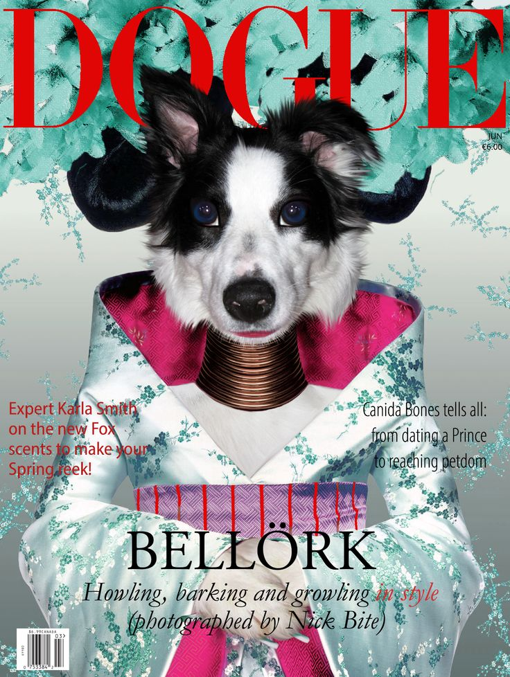 Bell 246 Rk The Famous Icelandic Singer Will Appear In Dogue
