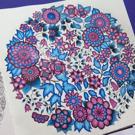 Johanna Basford   Picture by Rafaela Wrasse   Colouring Gallery