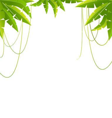 26 Best Jungle Theme Images On Pinterest Jungle Theme