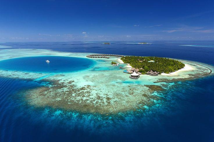 Команда Baros Maldives получает высокие награды!