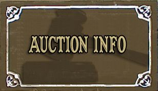 Live Auction Fundraiser Ideas