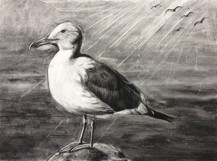 Yuko Kyutoku- Seagull- Charcoal on paper Purchase/ Contact: koyu712@hotmail.co.jp- Current Online Art Exhibition - International Gallery Of The Arts (IGOA)