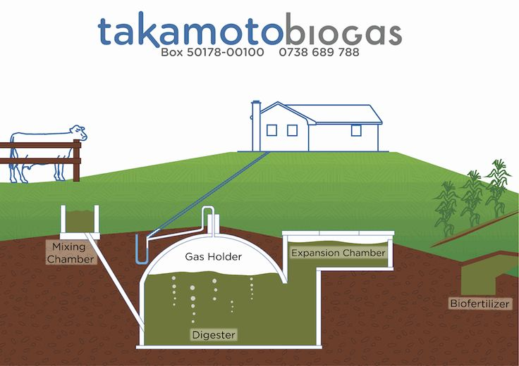 Resilient Entrepreneurs Abroad:  Building Biogas Systems in Kenya
