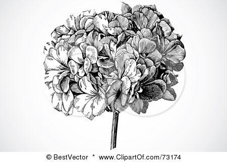 Idea?  Black or add some color to the beautiful hydrangea design?