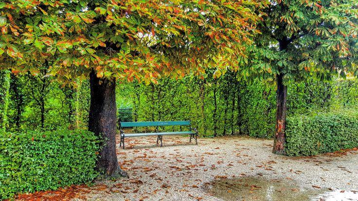 #belvedere #belvederepalace #wien #vienna #austria #rainnyday