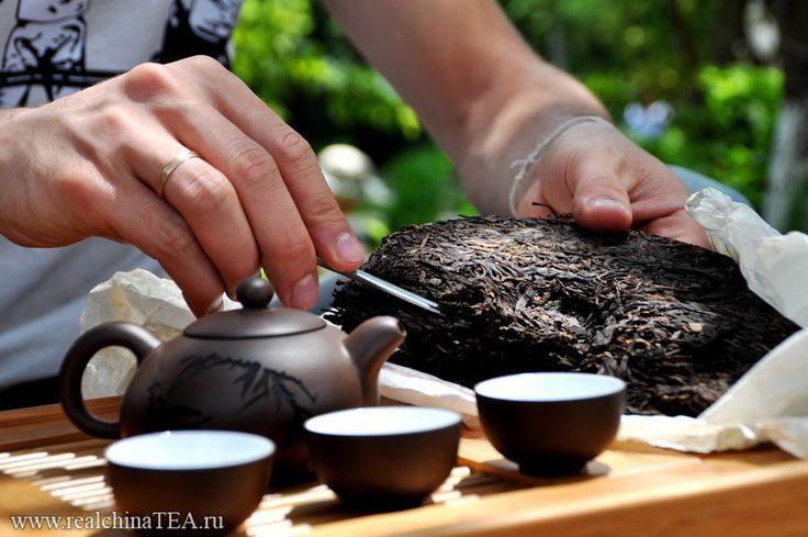 Как заварить чай зеленые типсы