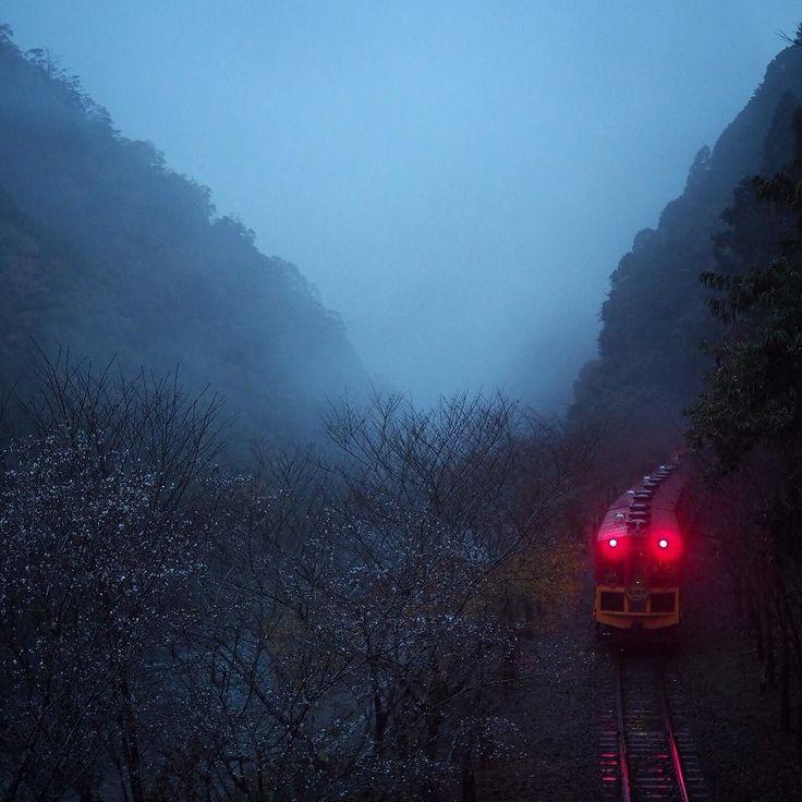 2015.11.17 僕もこれに乗って京都帰りたかったですがお見送り(;; 霧の中に消えゆく赤いテールランプが旅情を醸し出していました#保津峡 #トロッコ保津峡駅 #嵯峨野トロッコ列車 by kotobanohaoto