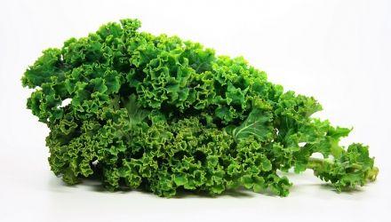 Zielone zdrowie- jarmuż