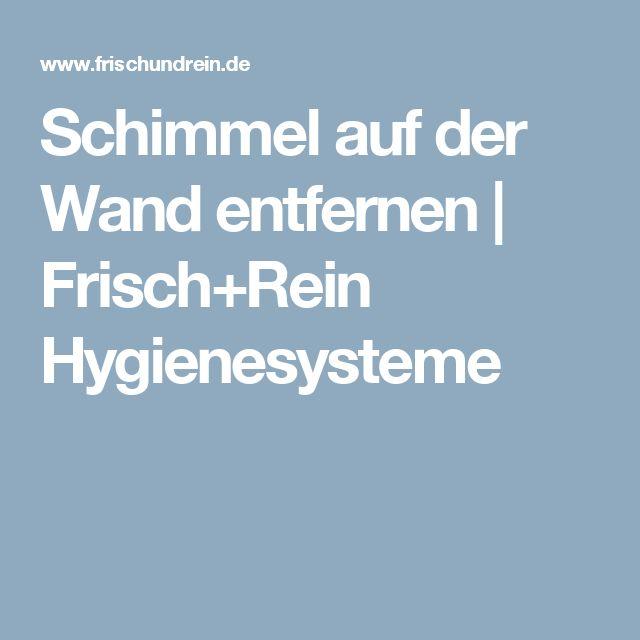 Schimmel auf der Wand entfernen | Frisch+Rein Hygienesysteme
