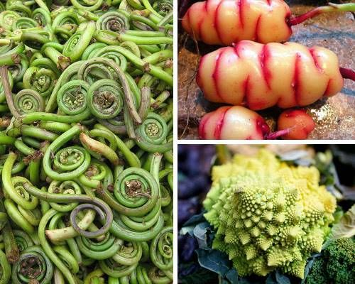 79 best images about Exotic Fruits and Vegetables on Pinterest ...