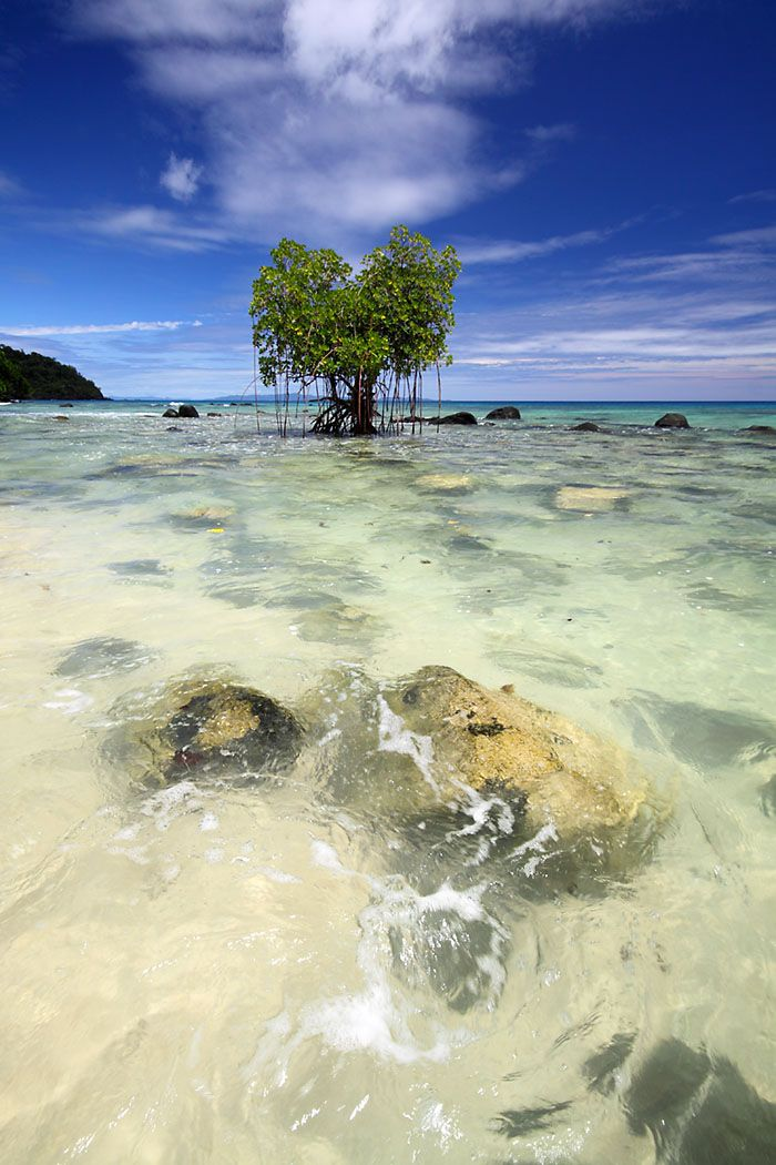 Qamea Island, Fiji
