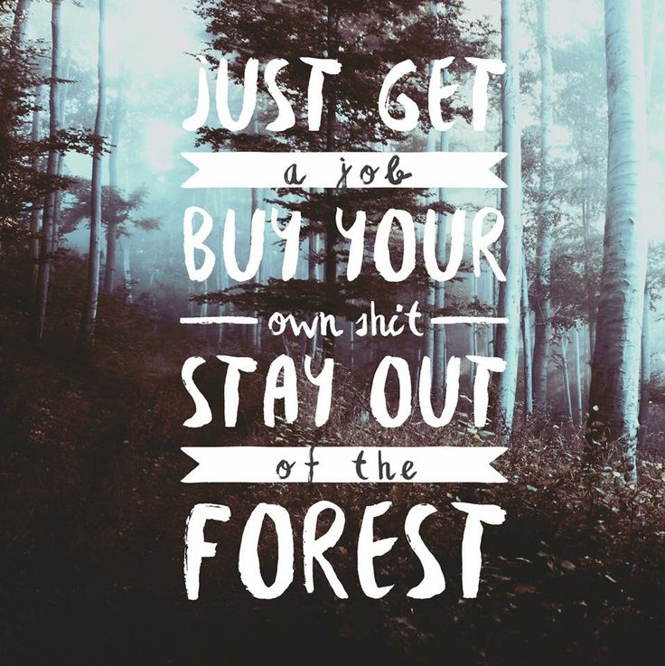 Image result for my favorite murder stay out of the woods