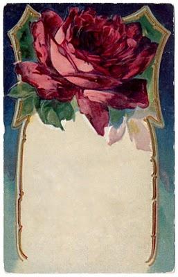 Plush Possum Studio: A Rose of an Antique Post Card