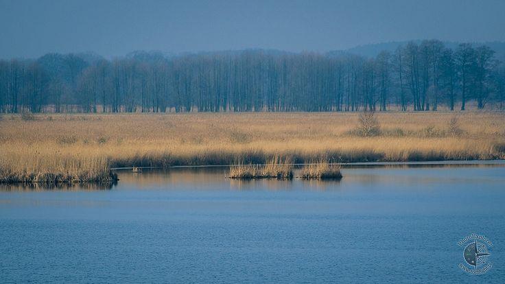 Rezerwat Świdwie - Puszcza Wkrzańska