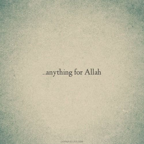 Let it go for the sake of Allah.. - www.lionofAllah.com