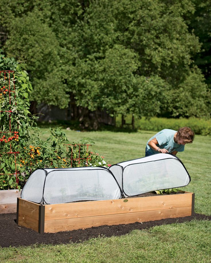 Row Shelter Accelerator for transplanting seedlings to your garden earlier in the growing season